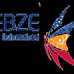 Gebze Teknik Üniversitesi